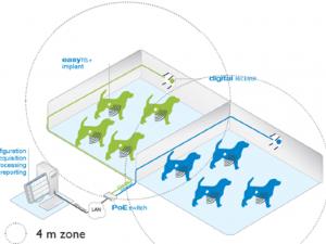 Hệ thống theo dõi huyết áp, điện tâm đồ và nhịp thở cho động vật